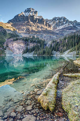 Photograph - Lake O'hara Scenic Shoreline by Pierre Leclerc Photography