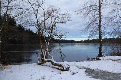 Photograph - Lake Padden Blue by Karen Molenaar Terrell