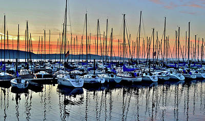 Photograph - Lake Pepin Sunrise by Susie Loechler