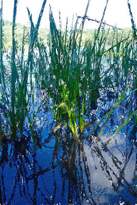 Painting - Lake Plants by Joan Reese