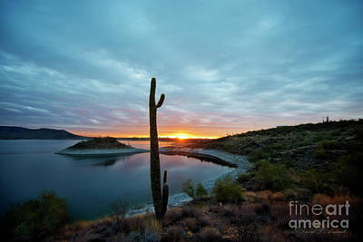 Photograph - Lake Pleasant Sunrise by David Arment