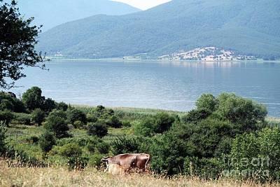 Lake Prespa Art Print by Violeta Ianeva