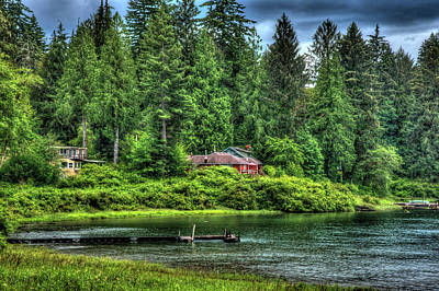 Photograph - Lake Quinault 3 by Richard J Cassato