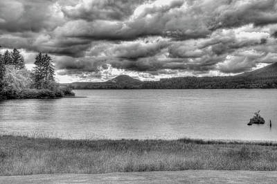 Photograph - Lake Quinault by Richard J Cassato