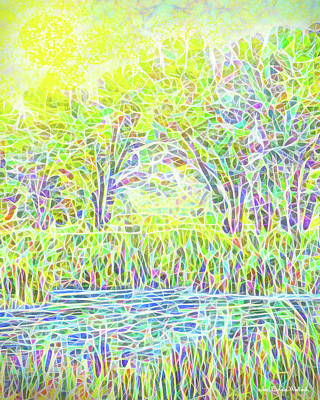 Digital Art - Lake Reeds On A Sunny Day - Pond In Boulder County Colorado by Joel Bruce Wallach