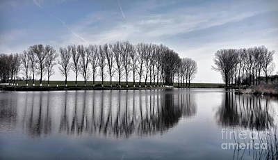 Photograph - Lake Reflection by Daliana Pacuraru