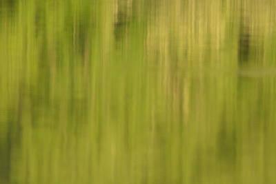 Belmont Lake State Park Wall Art - Photograph - Lake Reflections Abstract  by Joan Dreps-De Marco