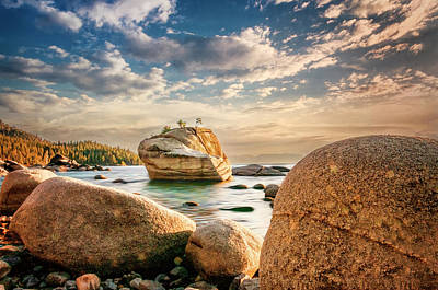 Photograph - Lake Rocks by Maria Coulson