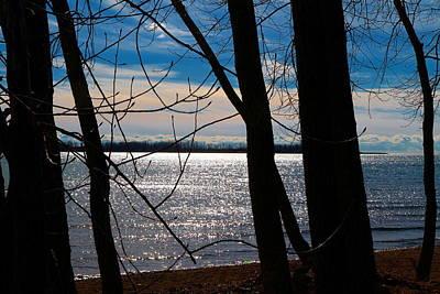 Photograph - Lake Romance by Valentino Visentini