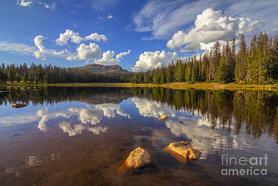 Photograph - Lilly Lake by Spencer Baugh