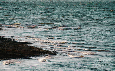 Photograph - Lake Strom Thurmond by Andrea Anderegg