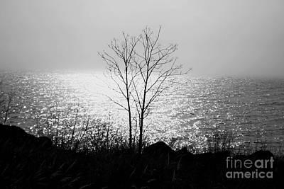 Wall Art - Photograph - Lake Superior Morning by Tom Chamberlain
