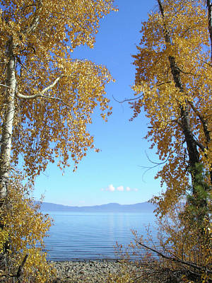 Lake Tahoe Autumn Art Print by Connie Handscomb