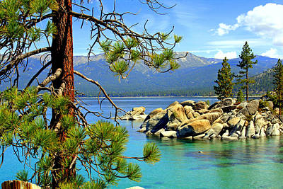 Lake Tahoe Colors Art Print by Lynn Bawden