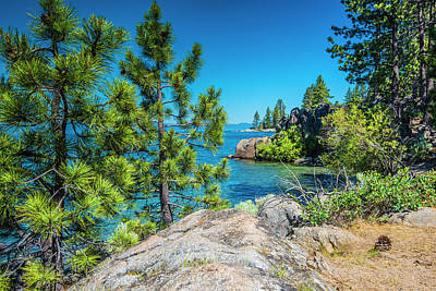 Photograph - Lake Tahoe In Summer I by Steven Ainsworth
