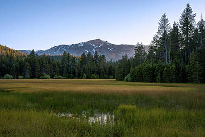 Photograph - Lake Tahoe Meadow by K Pegg
