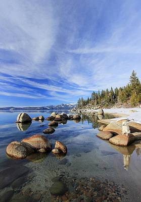Photograph - Lake Tahoe Reflections by Sean Sarsfield