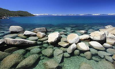 Photograph - Lake Tahoe Shore by Sean Sarsfield