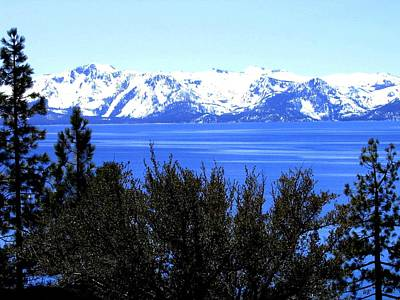Photograph - Lake Tahoe by Will Borden