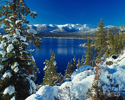Lake Photograph - Lake Tahoe Winter by Vance Fox