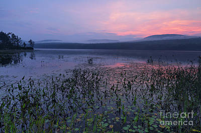 Photograph - Lake Tarleton - Piermont New Hampshire by Erin Paul Donovan
