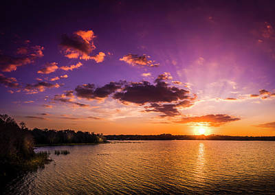 Saw Palmetto Photograph - Lake Tarpon Sunset by Marvin Spates