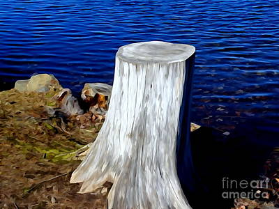 Digital Art - Lake Tree Stump by Ed Weidman
