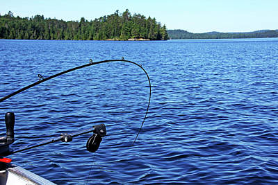 Photograph - Lake Trout Fishing by Debbie Oppermann