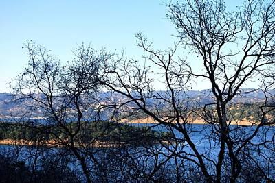 Photograph - Lake View Afternoon Through Trees by Matt Harang