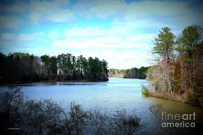 Photograph - Lake View by Shelia Kempf