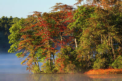 Photograph - Lake Waban Fall Foliage by Juergen Roth