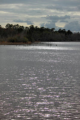 Lake Waccamaw Photograph - Lake Waccamaw by Suzanne Gaff