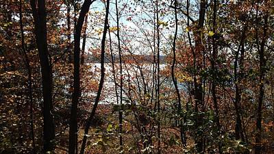 Photograph - Lake Wallenpaupack Through The Trees by Judith Rhue