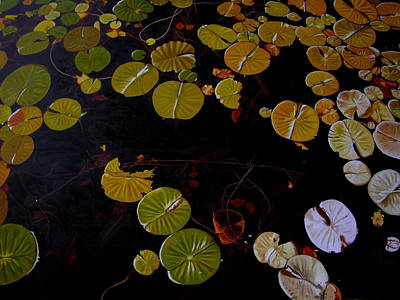 Print featuring the painting Lake Washington Lilypad 8 by Thu Nguyen