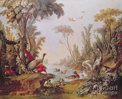 Stork Painting - Lake With Geese Storks Parrots And Herons by Francois Boucher