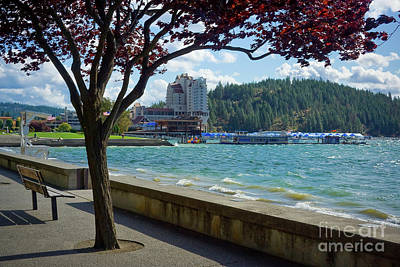 Photograph - Lakefront Cda by Idaho Scenic Images Linda Lantzy