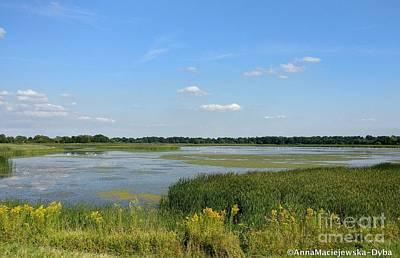 Photograph - Lakes In Summertime by Anna Folkartanna Maciejewska-Dyba