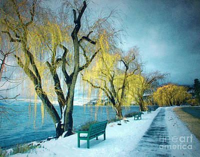 Photograph - Lakeshore Walkway In Winter by Tara Turner