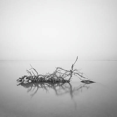 Photograph - Lakeside  1 by Catherine Lau