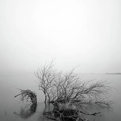 Photograph - Lakeside 2 by Catherine Lau