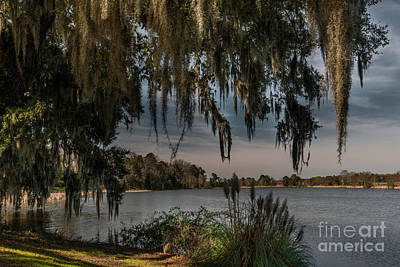 Photograph - Lakeside Dreaming by Dale Powell