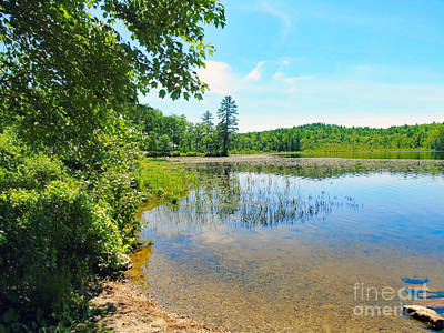 Photograph - Lakeside by Susan Lafleur
