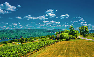 Photograph - Lakeside Vineyard II by Steven Ainsworth