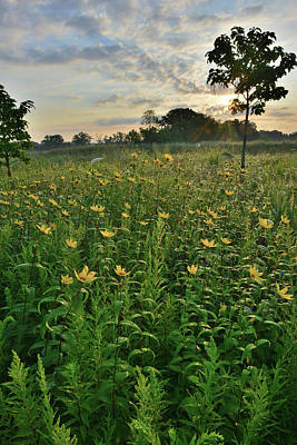 Photograph - Lakewood Prairie Sunrise by Ray Mathis