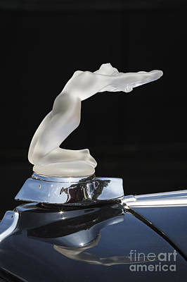 Photograph - Lalique Chrysis Hood Ornament by Dennis Hedberg