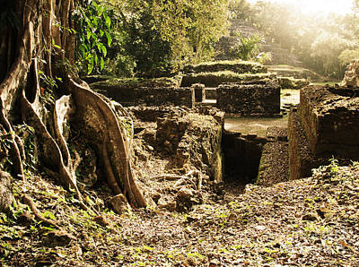 Photograph - Lamanai Mayan Ruins Of Belize by Tatiana Travelways