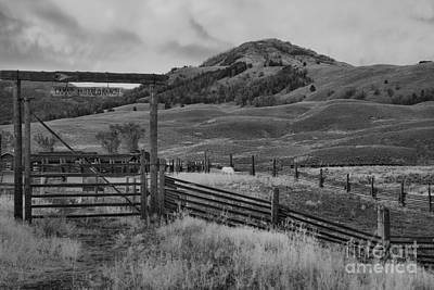 Photograph - Lamar Bison Ranch Sunset Black And White by Adam Jewell