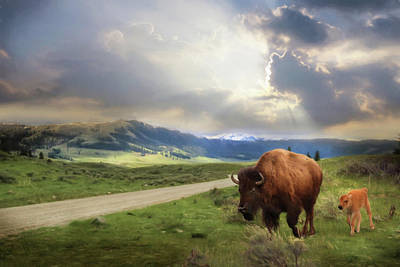 Yellowstone Digital Art - Lamar Valley Bison by Lori Deiter