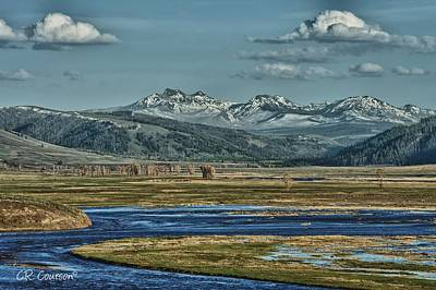 Photograph - Lamar Valley by CR  Courson