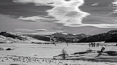 Photograph - Lamar Valley In Yellowstone by L O C